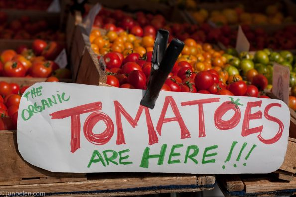 Fresh Farmers Market Tomatoes